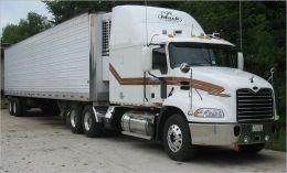 truck transportation company business plan