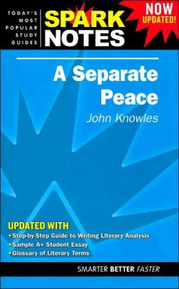 Novel and Separate Peace Chapters Essay Sample