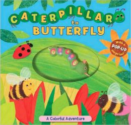 Caterpillar to Butterfly: A Colorful Adventure by Sally ...