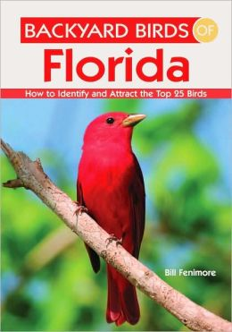 Backyard Birds of Florida: How to Identify and Attract the ...