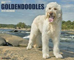 Goldendoodles 2013 Wall Calendar Willow Creek Press